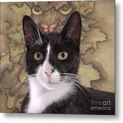 Homeless Kitty To Super Model Metal Print by Robert Stagemyer