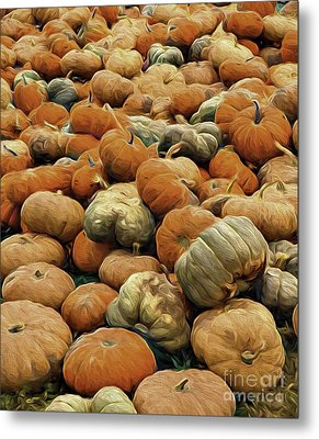 Homeless Pumpkins Metal Print by Nancy Marie Ricketts