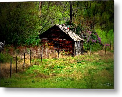 Homestead - Vaseux Lake Metal Print