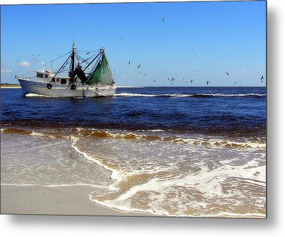 Homeward Bound Metal Print by Karen Wiles