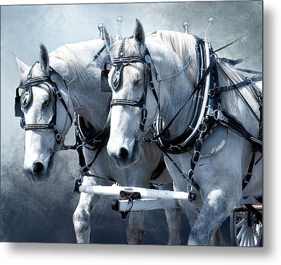 Metal Print featuring the digital art Homeward Bound by Mary Almond