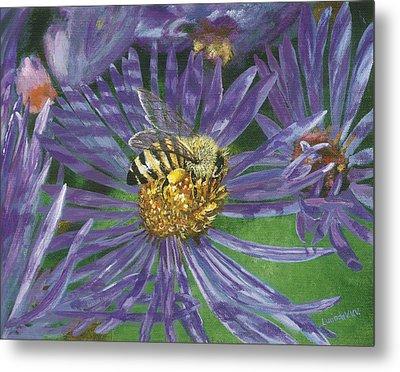 Honeybee On Purple Aster Metal Print by Lucinda V VanVleck
