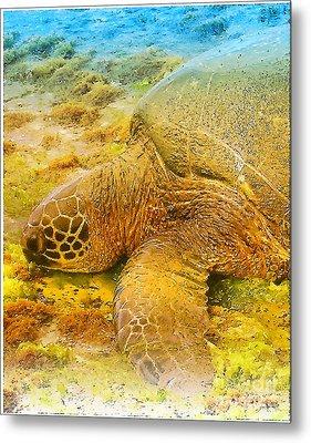 Honu  Sea Turtle Metal Print