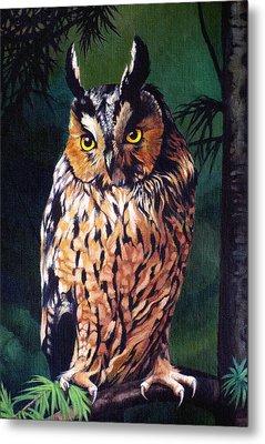 Hoot Owl Metal Print