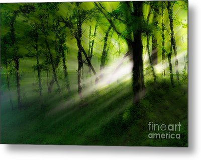 Hope Lights Eternal - A Tranquil Moments Landscape Metal Print by Dan Carmichael