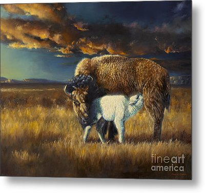 Hope Of A Nation Metal Print