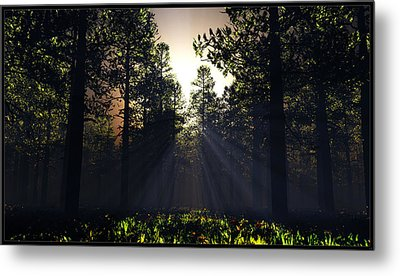 Hope Springs Eternal... Metal Print