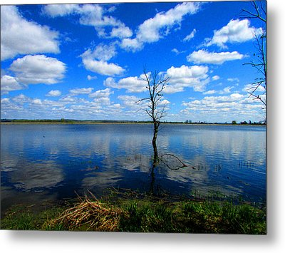 Metal Print featuring the photograph Horicon Blues by Kimberly Mackowski