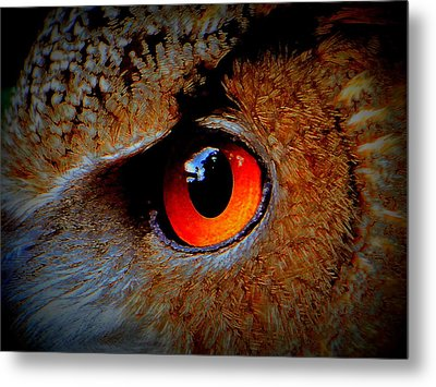 Metal Print featuring the painting Horned Owl Eye by David Mckinney