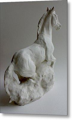 Horse 2 Metal Print by Derrick Higgins