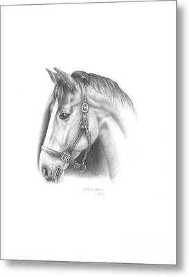 Horse-2 Metal Print by Lee Updike
