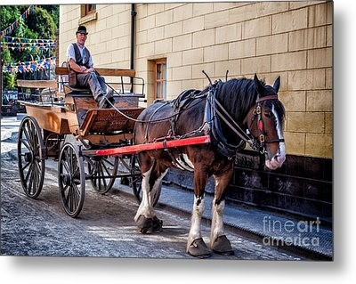 Horse And Cart Metal Print by Adrian Evans