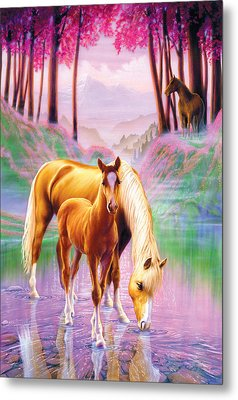 Horse And Foal Metal Print by Andrew Farley