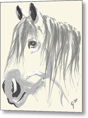 Horse- Big Jack Metal Print by Go Van Kampen