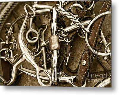 Metal Print featuring the photograph Horse Bits And Reins And Ropes by Lincoln Rogers