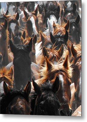 Horse Ears Metal Print