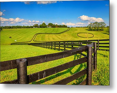 Horse Farm Fences Metal Print by Alexey Stiop