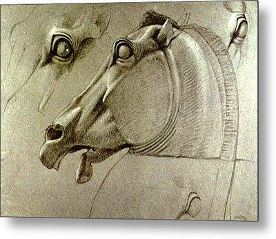 Horse Head Sketch Metal Print by