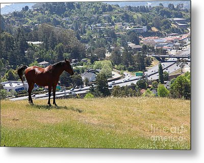 Horse Hill Mill Valley California 5d22663 Metal Print by Wingsdomain Art and Photography