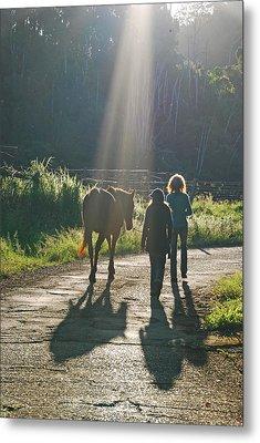 Horse In The Spotlight Metal Print by Ankya Klay