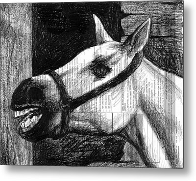 Horse Metal Print by Mark Zelmer