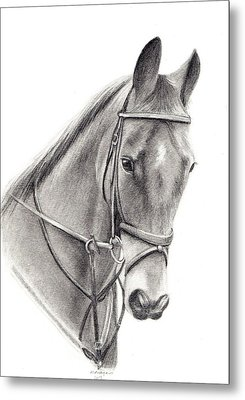Horse Metal Print by Mary Mayes