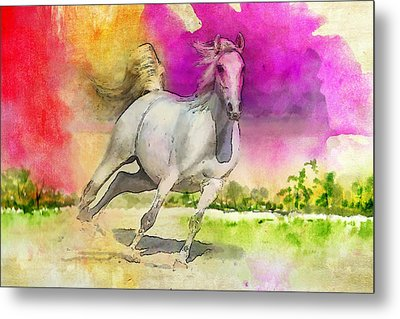 Horse Paintings 007 Metal Print by Catf