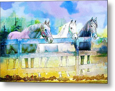 Horse Paintings 008 Metal Print by Catf