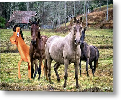 Horse Play Metal Print by Doctor Sid