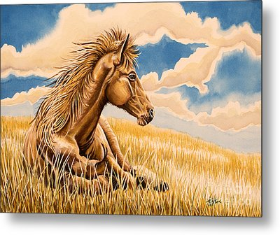 Horse Resting Metal Print by Tish Wynne