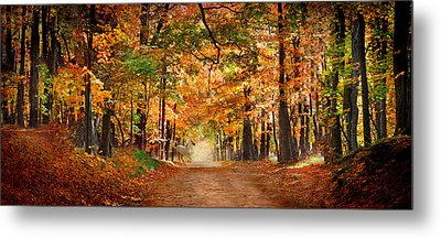 Horse Running Across Road In Fall Colors Metal Print