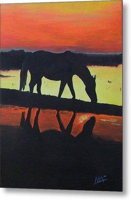 Horse Shadows Metal Print by Mark Fluharty