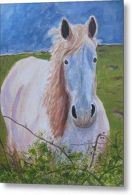 Horse With Stormy Skies Metal Print by Dawn Dreibus