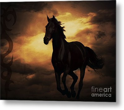 Horse With Tribal Tattoo  Metal Print