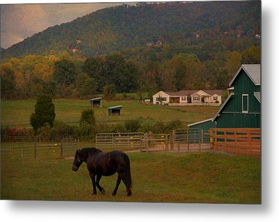Horseback Riding In Gatlinburg Metal Print by Dan Sproul