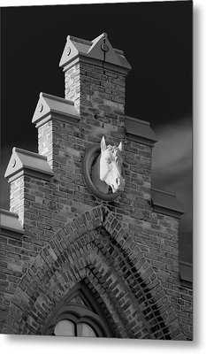 Horsehead   8256 Metal Print by Guy Whiteley