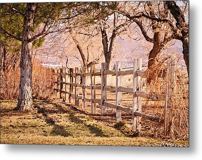 Metal Print featuring the photograph Horsemans Park Reno Nevada by Janis Knight