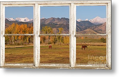 Horses And Autumn Colorado Front Range Picture Window View Metal Print by James BO  Insogna