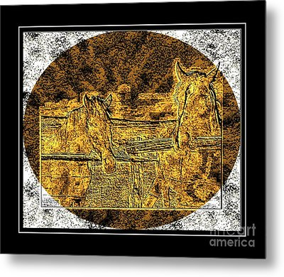Horses -  Brass Etching Metal Print by Barbara Griffin
