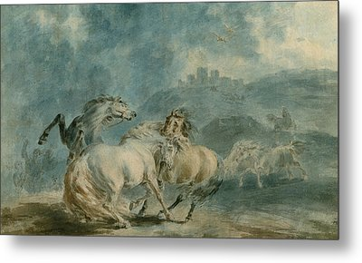 Horses Fighting Metal Print by Sawrey Gilpin