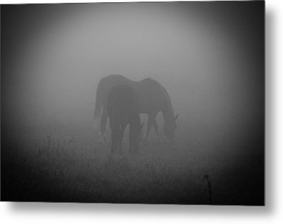 Metal Print featuring the photograph Horses In The Mist. by Cheryl Baxter