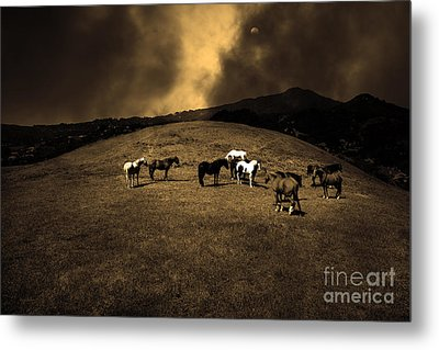 Horses Of The Moon Mill Valley California 5d22673 Sepia Metal Print by Wingsdomain Art and Photography