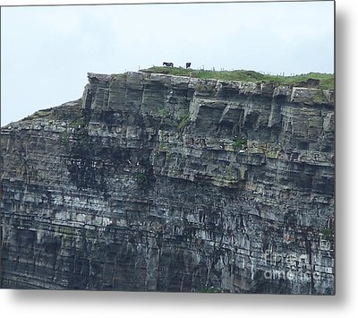 Horses On Cliff Metal Print by Marilyn Zalatan