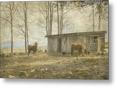 Horses On The Farm Metal Print