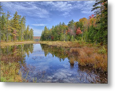 Horseshoe Lake Hdr 01 Metal Print