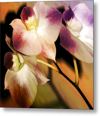Hot Orchid Nights Metal Print by Holly Kempe
