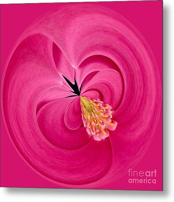 Hot Pink And Round Metal Print