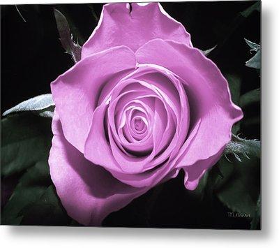 Hot Pink Rose Metal Print