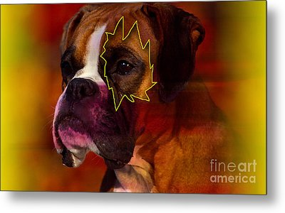House Broken Boxer Painting Metal Print