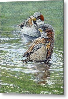 House Sparrows  Metal Print by Ken Everett
